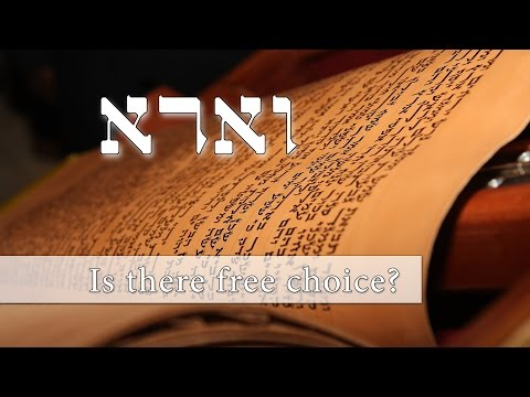 Parashat Va'eira - Is there free choice? - Rabbi Alon Anava