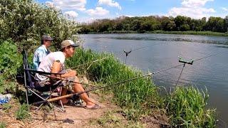 Ночевка на реке Дон Удачная рыбалка в Воронежской области Ловля карася на фидер