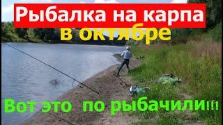 Рыбалка на карпа в октябре Вот и по рыбачили