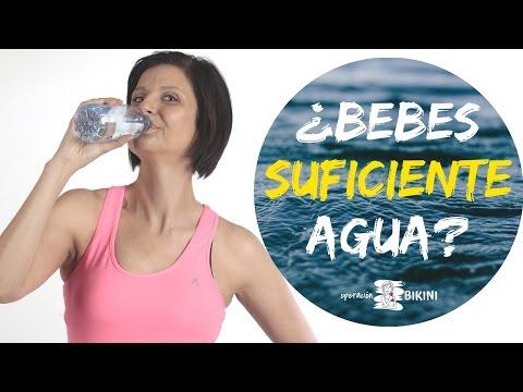 ¿Bebes suficiente agua? ¿Cuánta agua tengo que beber? 🔝