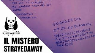 L'agghiacciante caso di StrayedAway su Twitter