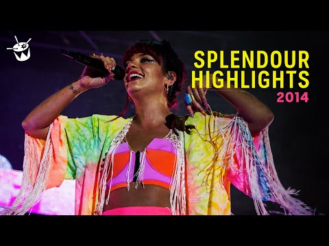 triple j's Splendour In The Grass Highlights 2014 (Peking Duk - 'High' live)