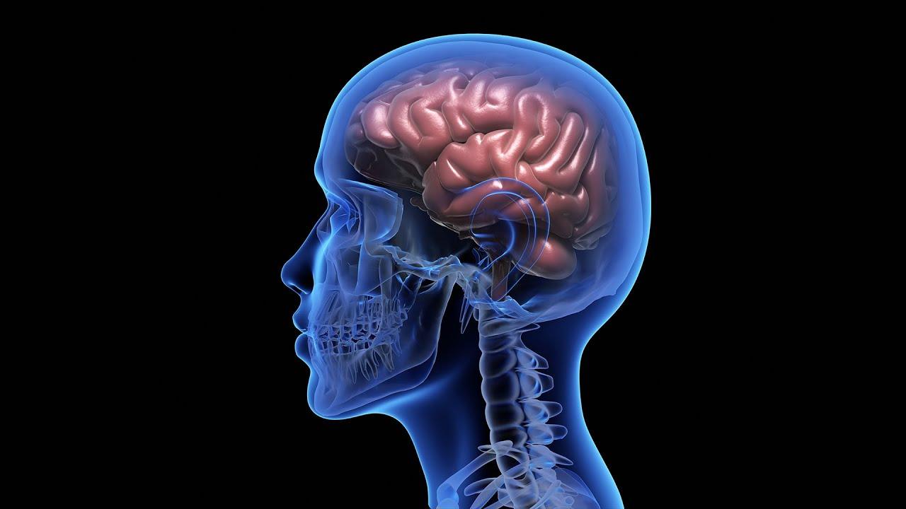 """Ce pagini folosesc pentru a invata si a mentine """"brainul"""" 😂  in forma!"""