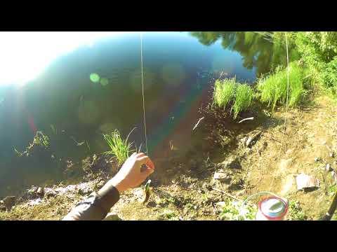 летняя рыбалка на щуку - 2018-06-25 22:51:40