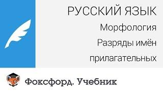Русский язык. Морфология: Разряды имён прилагательных. Центр онлайн-обучения «Фоксфорд»