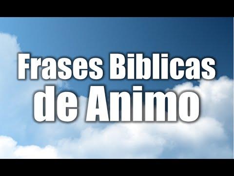 Frases Bíblicas De ánimo Frases Para Motivar Al Cristiano Mensajes Cristianos