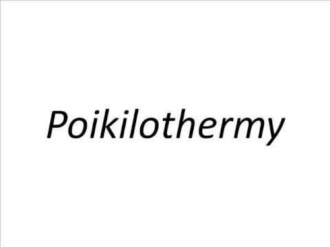 How to Pronounce Poikilothermy