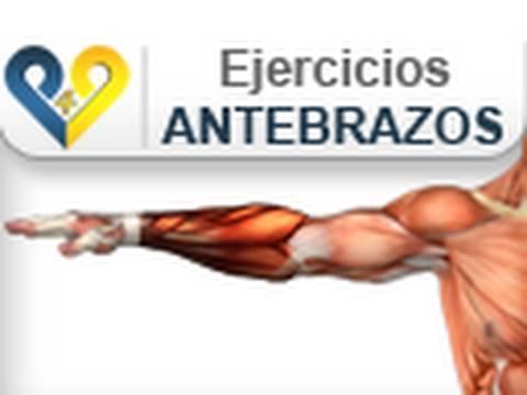 ejercicios para aumentar antebrazo y muñeca