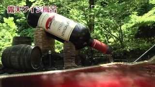 箱根小湧園ユネッサン 温泉施設・温水プールの紹介映像