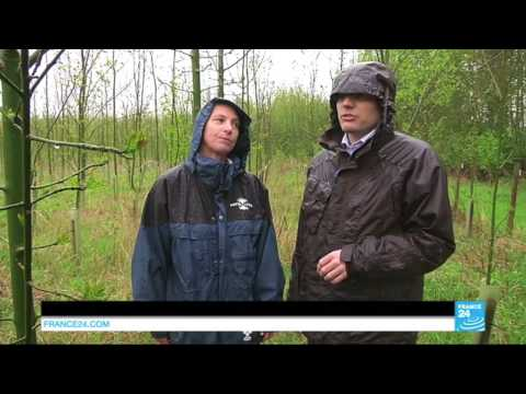 """France24 """"Talking Europe"""" 15th May 14 on ash dieback research"""