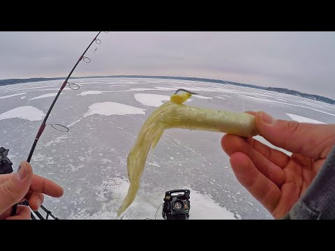 ICE FISHING Lake TROUT For The FIRST TIME!!
