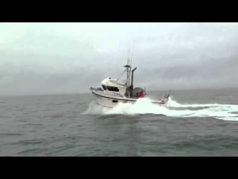 Freddy's Marine Boats / Fish &Yacht