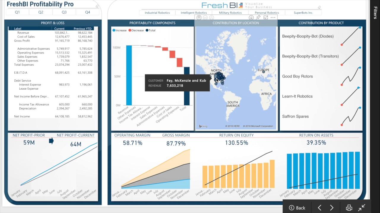 Power BI Showcase: Profitability Pro