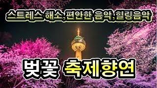 꽃길만 걸으세요, 봄의 상징꽃, 벚꽃 축제향연,벛꽃 꽃…