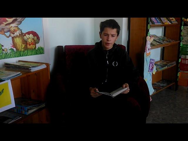 Изображение предпросмотра прочтения – ИванЕпрынцев читает произведение «Первое путешествие» М.И.Цветаевой