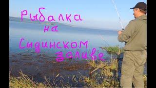 Едем на рыбалку на Сыдинский залив Красноярское водохранилище