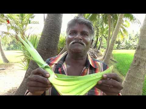 TODDY palmyra SAP | JUICE of Asian palmyra palm wine | Neera | Pathaneer | HEALTHY THAATI KALLU