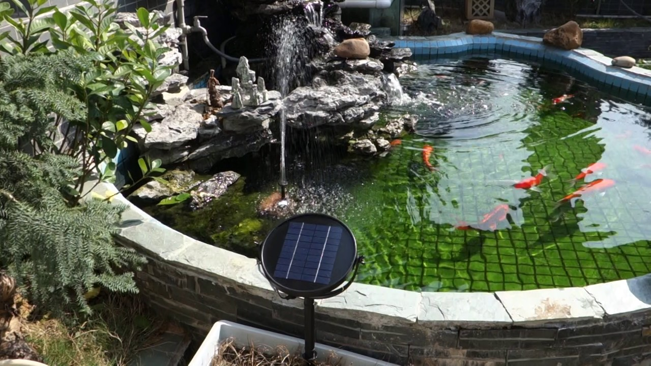 Anself 9v 2w Solar Panel Solar Powered Fountain For Bird Bath Pond Youtube