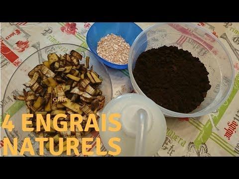 4 engrais naturels