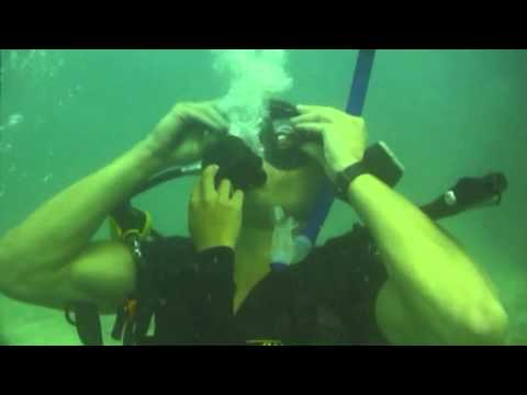 Basic Open Water Certification Scuba Diving in Koh Tao, Thailand