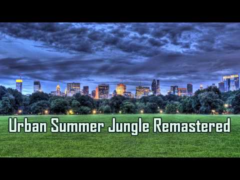 Urban Summer Jungle Remastered -- Glitch Hop -- Royalty Free Music