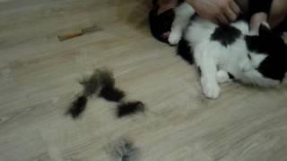 Фурминатор расческа для собак и кошек своми руками
