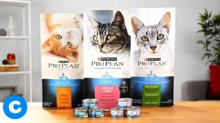 Purina Pro Plan Focus for Cats | Chewy