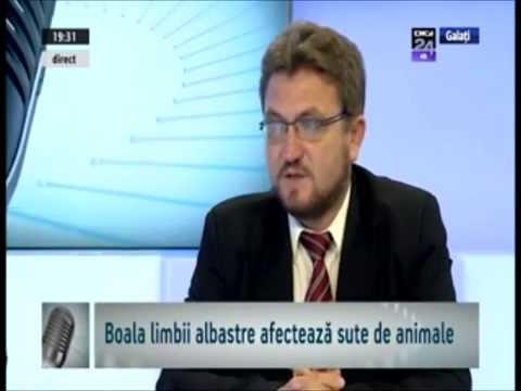 dr Iulian Bot si Vasile Stefan despre boala limbii albastre, la Digi24 Galati