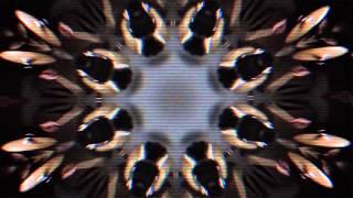 Video Grave - Fear