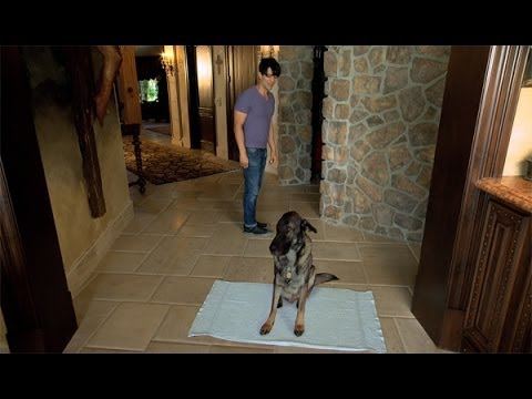 Criss Angel BeLIEve: Criss Plays The Staring Game On Spike