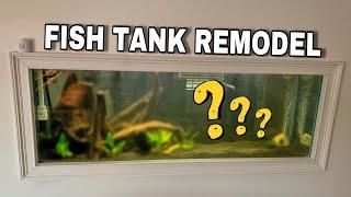 my-160g-predator-fish-aquarium-re-scaping