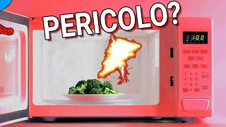 Risks and hazards of the MICROWAVE OVEN