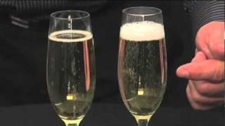 Schott Zwiesel Champagne Flutes by Pottery Barn