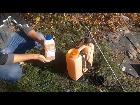Как использовать раундап от сорняков