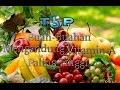 Top 5 Buah Yang Mengandung Vitamin A Paling Tinggi