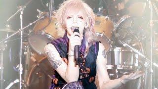 the Raid. 「純潔ピラニア」 LIVE (2015.9.28 BIGCAT)