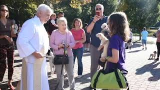 Blessing of the Animals at St. Mark Church in Vienna