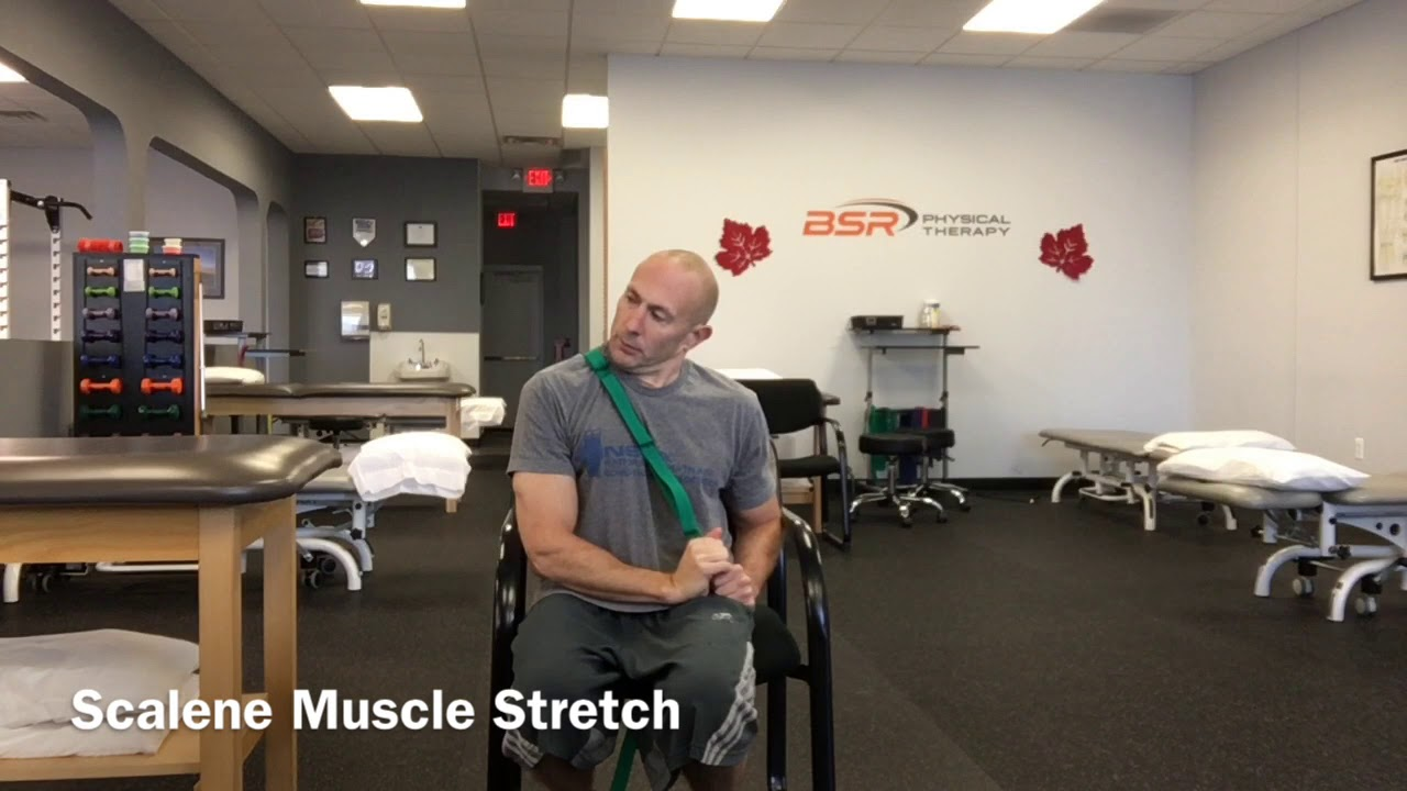 Download Scalene Muscle Stretch