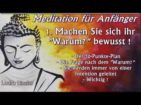 Meditation für Anfänger 01: Machen Sie sich ihr 'Warum' bewusst ! - Lodro Rinzler