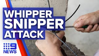 Lawn mower man jailed for an unprovoked whipper snipper attack I 9News Perth