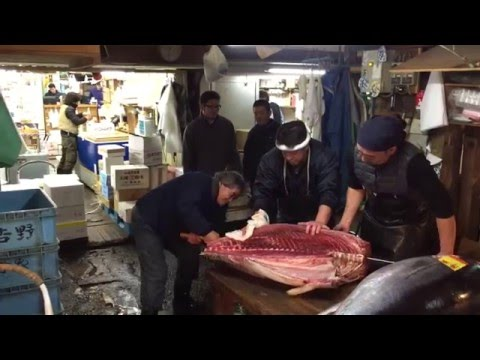 Japan: Tokyo - Tsukiji filleting fresh tuna with a sword