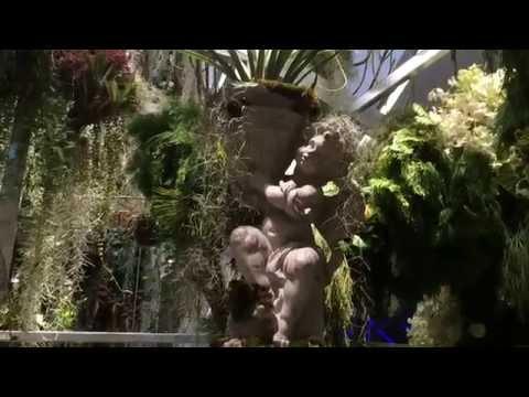 FLORAL PARADISE เสน่ห์ของมวลดอกไม้ ดอกไม้เต็มห้าง