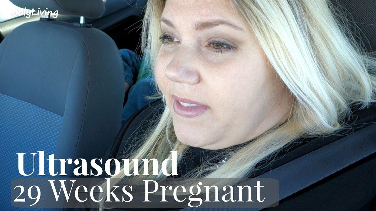 Baby anatomy ultrasound