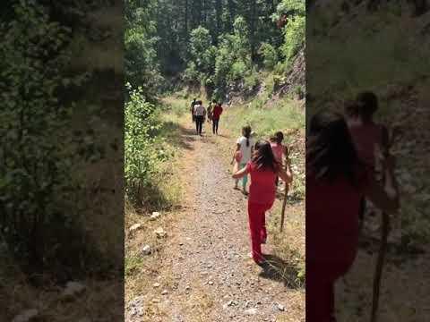 Yeğenlerle Orman da gezerken