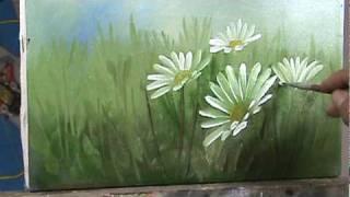 Pintando margaridas