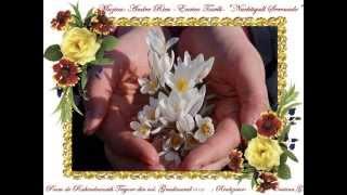 "SIMFONIA PRIMĂVERII Muzica: André Rieu-Enrico Toselli-""Nachtingall Serenade"""