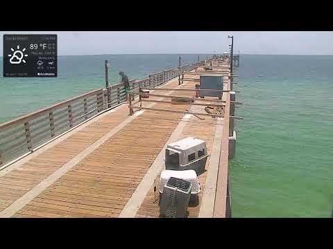 Dania Beach Pier and Beach Cam