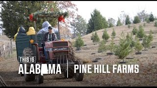 Pine Hill Farms | This is Alabama