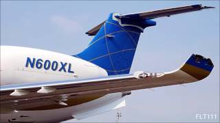 ExcelAire Business Jet - Cockpit Voice Recording [MID-AIR COLLISION CAUSED BY ATC AND TCAS ERROR]