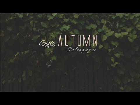 [Lyrics + Vietsub] Bye, Autumn - Saltnpaper